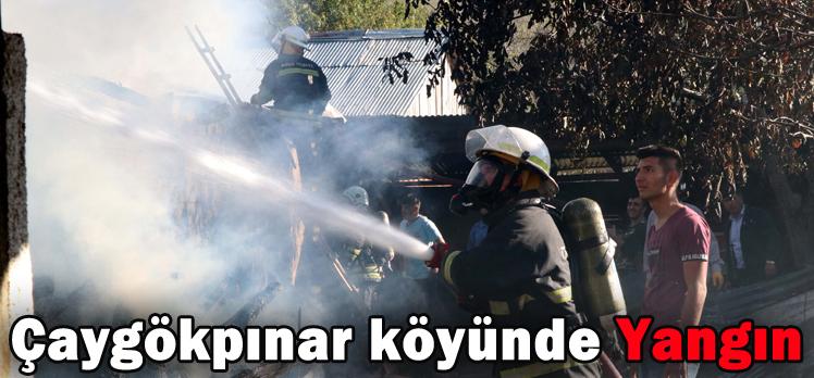 Çaygökpınar köyünde Yangın
